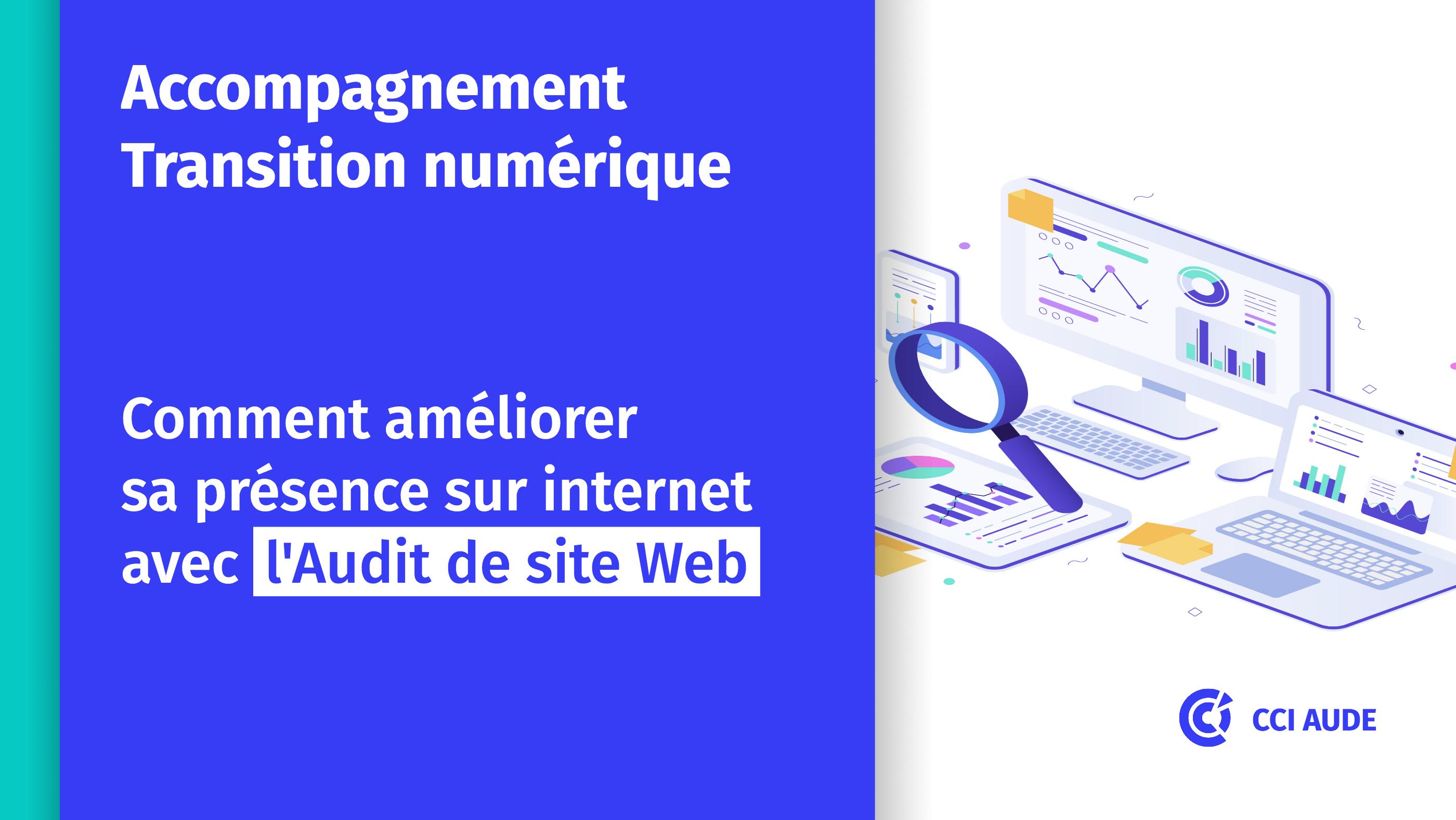 2020 Audit Site Web visuel