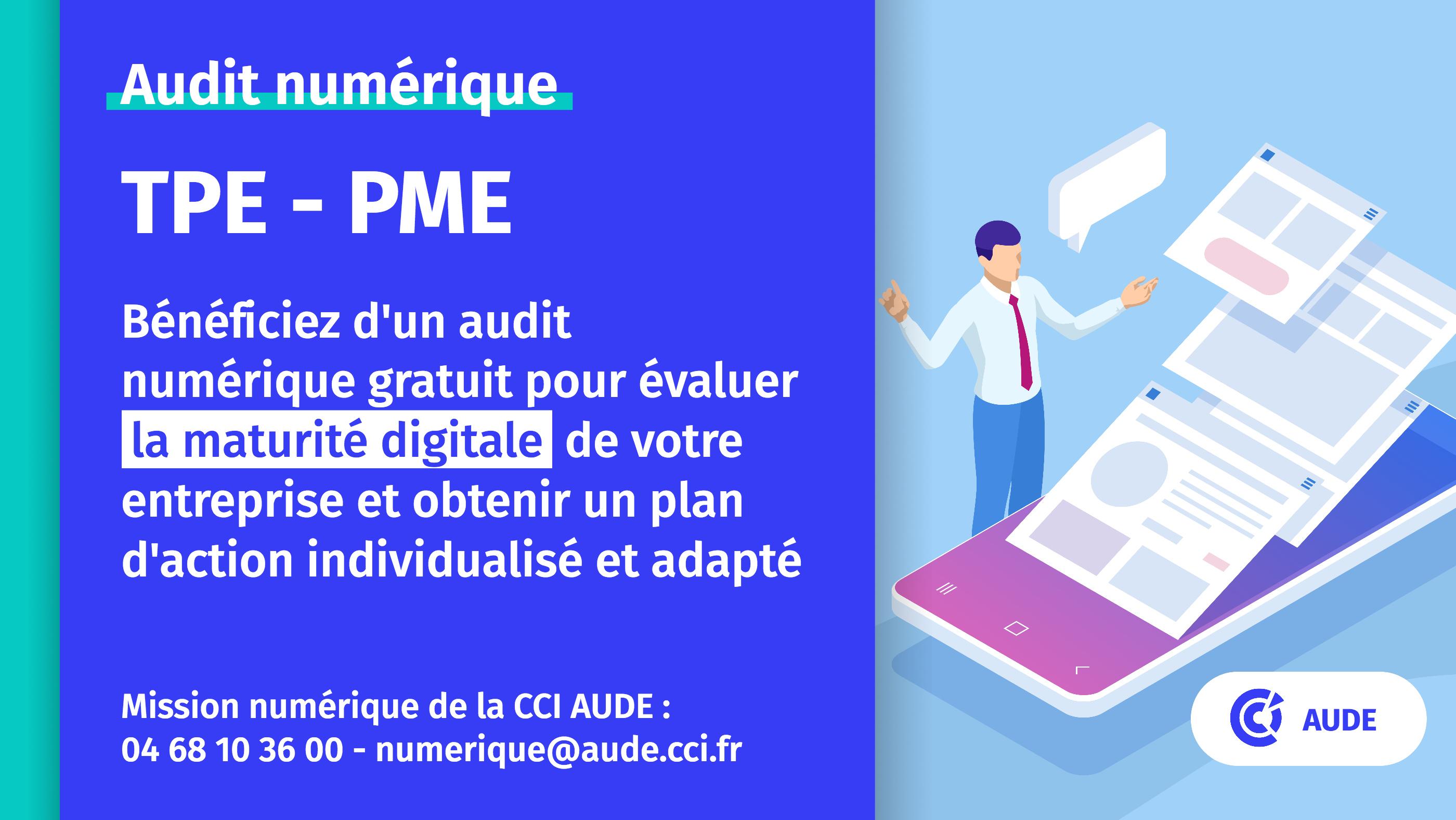 2021 Audit numerique visuel
