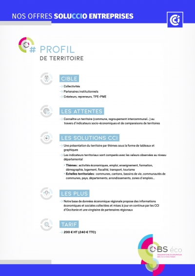 2020-11 Fiche A profil territoires offres solucio entreprises CCIO