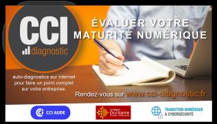 2020 - CCI Diagnostic maturité numérique